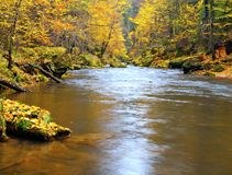 Autumn colors at mountain river banks. Fresh green mossy boulders on river banks with vivid colors. Stock Images