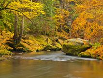 Autumn colors at mountain river banks. Fresh green mossy boulders on river banks with vivid colors. Royalty Free Stock Photos