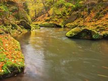 Autumn colors at mountain river banks. Fresh green mossy boulders on river banks with vivid colors. Stock Image