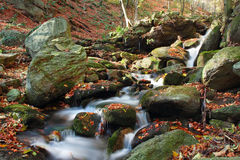 Autumn colors in mountain stream Royalty Free Stock Photography