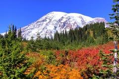Autumn colors. On Mt. Rainier National Park Royalty Free Stock Images