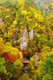 Autumn Colors of Naruko-Gorge royalty free stock photo