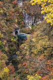 Autumn Colors of Naruko-Gorge in Japan Stock Images