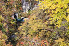 Autumn Colors of Naruko-Gorge in Japan Stock Photos