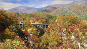 Autumn colors of Naruko Gorge in Japan and nice blue and cloud b stock video