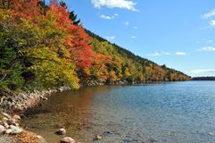 Autumn colors in the National Park of Bar Harbor Royalty Free Stock Image