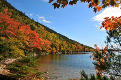 Autumn colors in the National Park of Bar Harbor Royalty Free Stock Photos