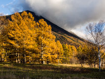 Autumn colors in Nikko, Japan Stock Images