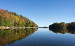 Autumn Colors on a Northern Lake Royalty Free Stock Photo