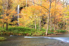 Autumn Colors of Oirase Stream Stock Photos