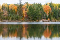 Autumn Colors On Lake, Ontario Canada Royalty Free Stock Photos