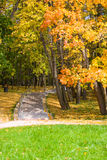 Autumn colors in the park Stock Photos