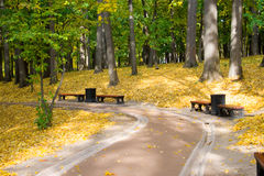 Autumn colors in the park Stock Photo