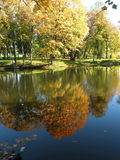 Autumn colors in park Stock Images