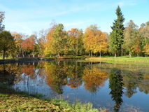 Autumn colors in park Stock Photography