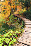 Autumn colors in Plitvice National Park Royalty Free Stock Images