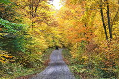 Autumn colors in Quebec, North America. Autumn colors in Quebec, Canada, North America royalty free stock photo