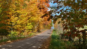 Autumn colors in Quebec, North America. Autumn colors in Quebec, Canada, North America royalty free stock image