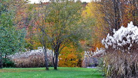 Autumn colors in Quebec, North America. Autumn colors in Quebec, Canada, North America stock photography