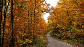 Autumn colors in Quebec, North America. Autumn colors in Quebec, Canada, North America stock photos