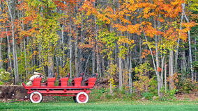 Autumn colors in Quebec, North America. Autumn colors in Quebec, Canada, North America royalty free stock images