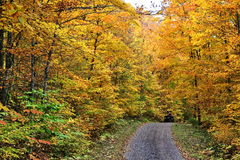 Autumn colors in Quebec, North America. Autumn colors in Quebec, Canada, North America royalty free stock photos
