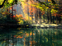 Autumn colors reflected in lake Stock Photography