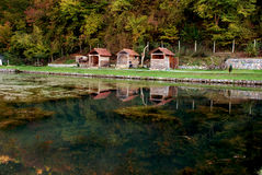 Autumn colors reflected in the water Royalty Free Stock Image