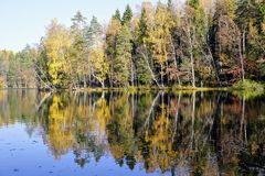 Autumn colors reflecting from lake royalty free stock image