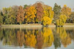 Autumn colors. Reflecting in lake, Herastrau Park, Bucharest, Romania Stock Image