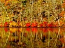 Autumn colors reflecting in lake, Massachusetts. Fall foliage reflecting in lake of rural Massachusetts, USA Stock Photo