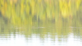 Autumn Colors Reflection On A Calm Lake In Sweden Royalty Free Stock Photography