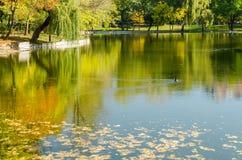 Autumn Colors Reflections Royaltyfri Bild