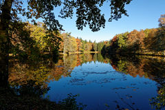 Autumn colors. Reflections on a lake during the autumn season in the Sédières domain in Corrèze, France Stock Photography