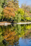 Autumn Colors Reflections Royalty Free Stock Photo