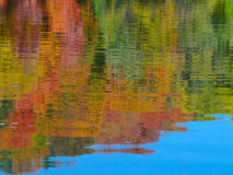 Autumn Colors Relected en el río Misisipi Imagen de archivo libre de regalías