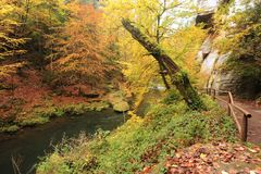 Autumn colors river Royalty Free Stock Photo