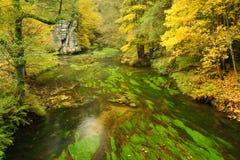 Autumn colors river Stock Photo