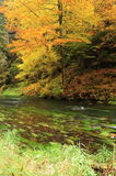 Autumn colors river Stock Photography
