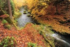 Autumn colors river Stock Photos