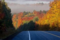 Autumn Colors and road Royalty Free Stock Photo