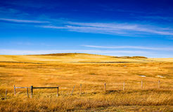 Autumn colors on rural grasslands, Colorado, United States Stock Images