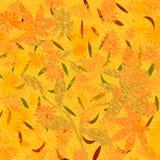Autumn colors scrapbook vector illustration