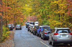 Autumn Colors in a State Park. TALLULAH FALLS, GA, USA - NOVEMBER 5, 2017- Cars parked on a road at Tallulah Gorge State Park in Georgia. Many people were royalty free stock photos