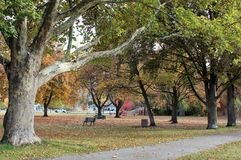 Autumn Colors Summerland Park Royalty Free Stock Photo