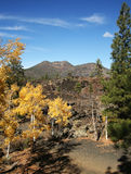 Autumn Colors at Sunset Crater Stock Photography