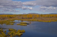 Autumn colors surround a lake and gray clouds above Royalty Free Stock Photo