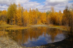 Autumn colors surround a lake Royalty Free Stock Images