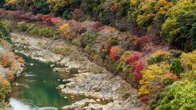 Autumn colors surround Sagano rail, Arashiyama Stock Photo