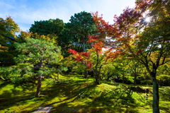 Autumn colors at tofukuji temple, Kyoto Stock Images